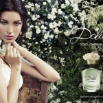 Dolce Advertising